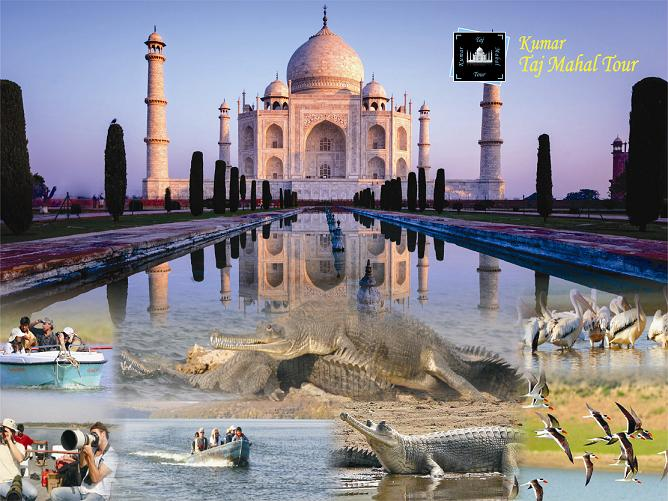 Taj Mahal with Chambal Safari
